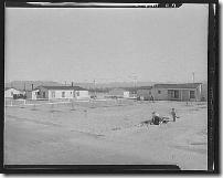 SFV federal subsistence homesteads