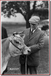 Henry Cantwell Wallace, looking at Fern's Oxford Triumph, a cow